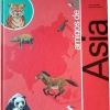 amigos-dodo-asia