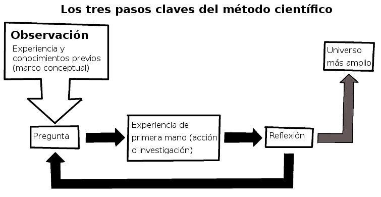 indagacion_ciclo