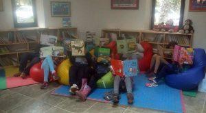 cojines-biblioteca